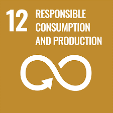 United Nations Sustainable Development Goal 12: Responsible Consumption & Production