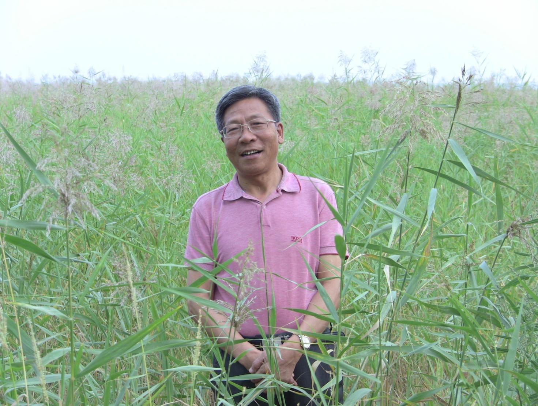 Lianxi Sheng